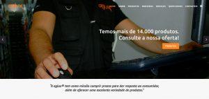 Website AGLUX